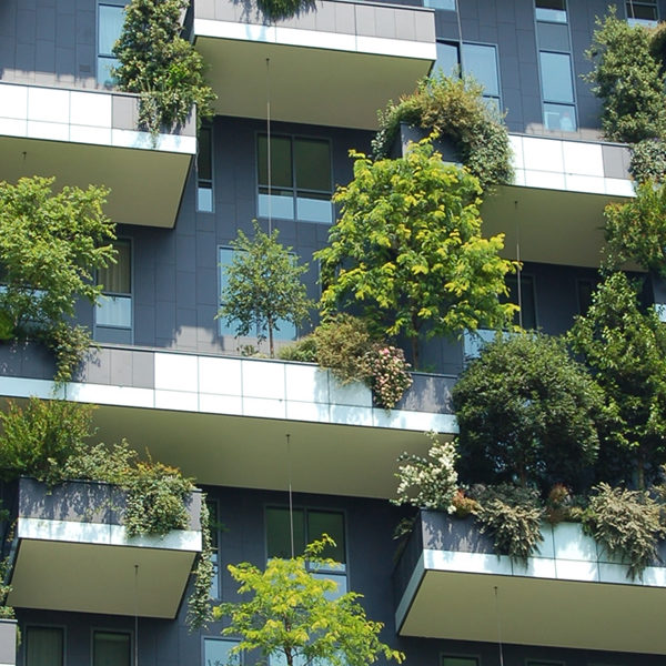 Green shrubs add the wow factor to urban apartments.